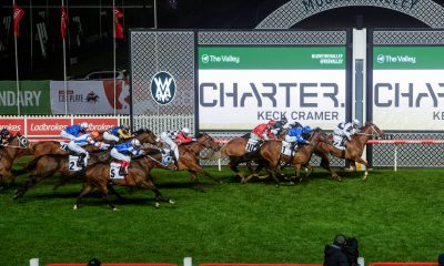 Moonee Valley Tips