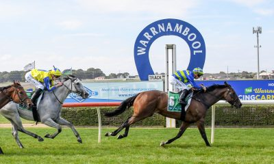 Warrnambool Racing Tips