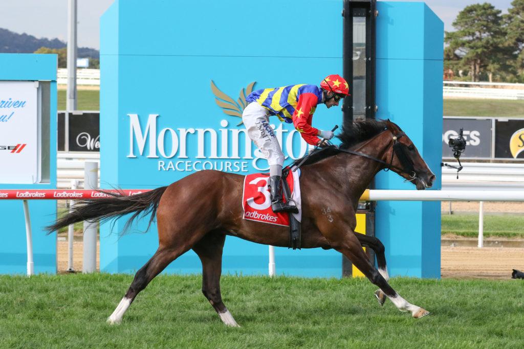 Mornington Racing tips