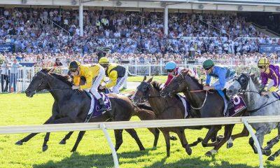 ascot-races