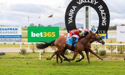 yarra-valley-racing