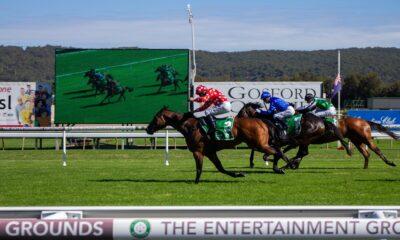 gosford-race-club